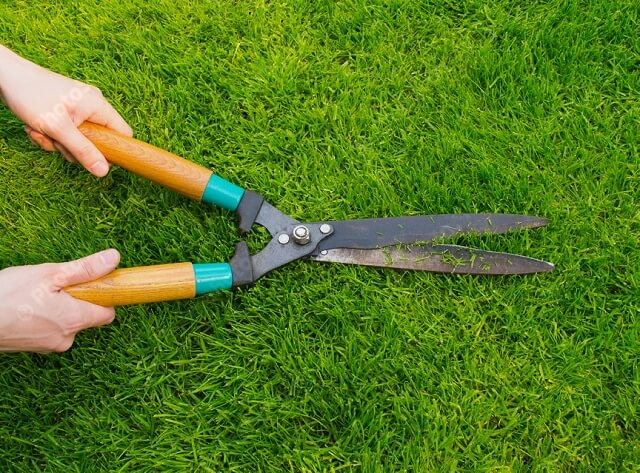 Grass Clippers