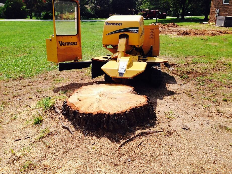 Dig out the stump
