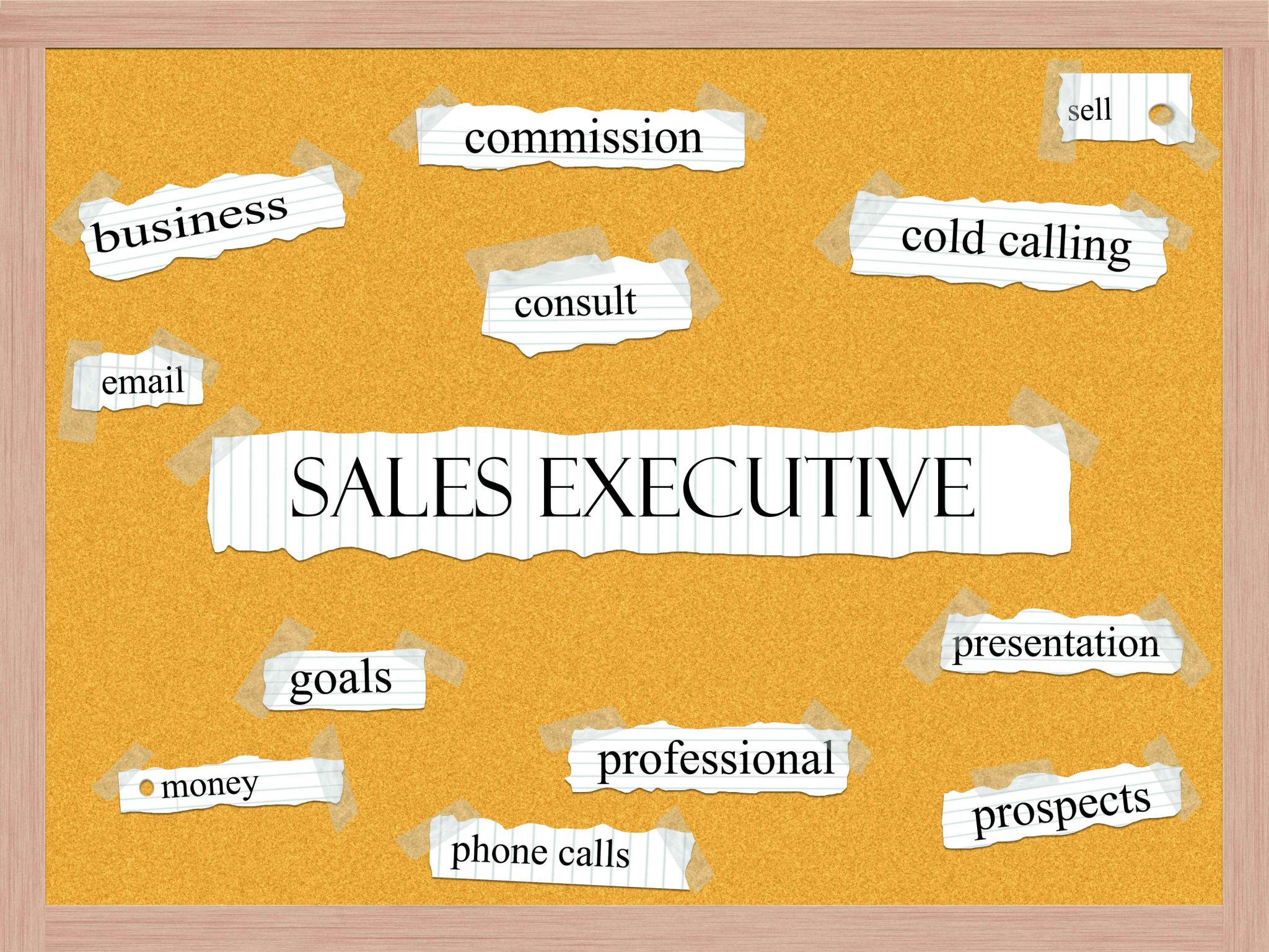 Sales Presentation Techniques Joe Elkind