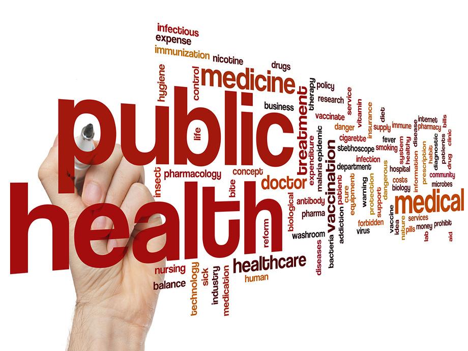 public health-public health
