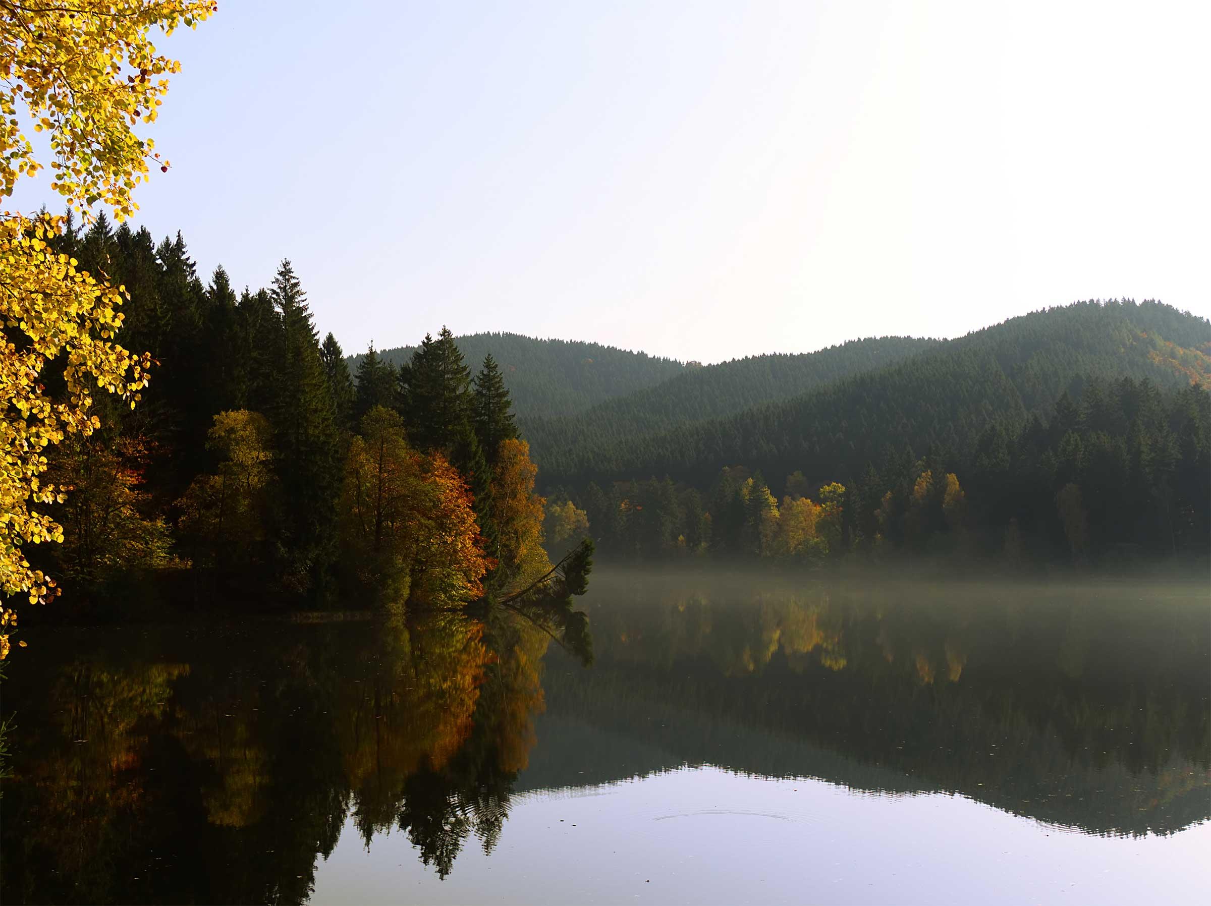 lake bays