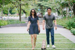 Adopt Dogs - Stephanie Taunton