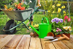 garden supplies brighton