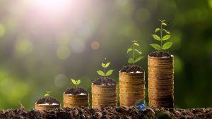 Maximize your Profitability - Real Estate Team