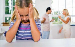Lynette Boggs Perez   About Child Custody Cases