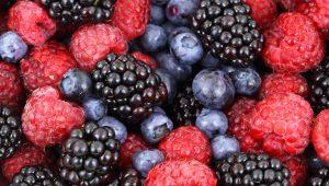 Mark McCool Sarasota - Berries