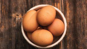 Mark McCool Sarasota - Eggs
