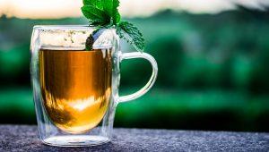 Mark McCool Sarasota - Green Tea