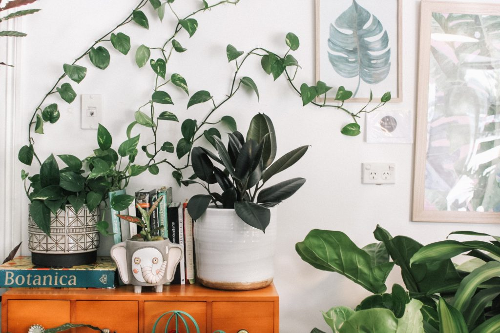 scents overcome your home