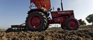 Soil Fertility Needs