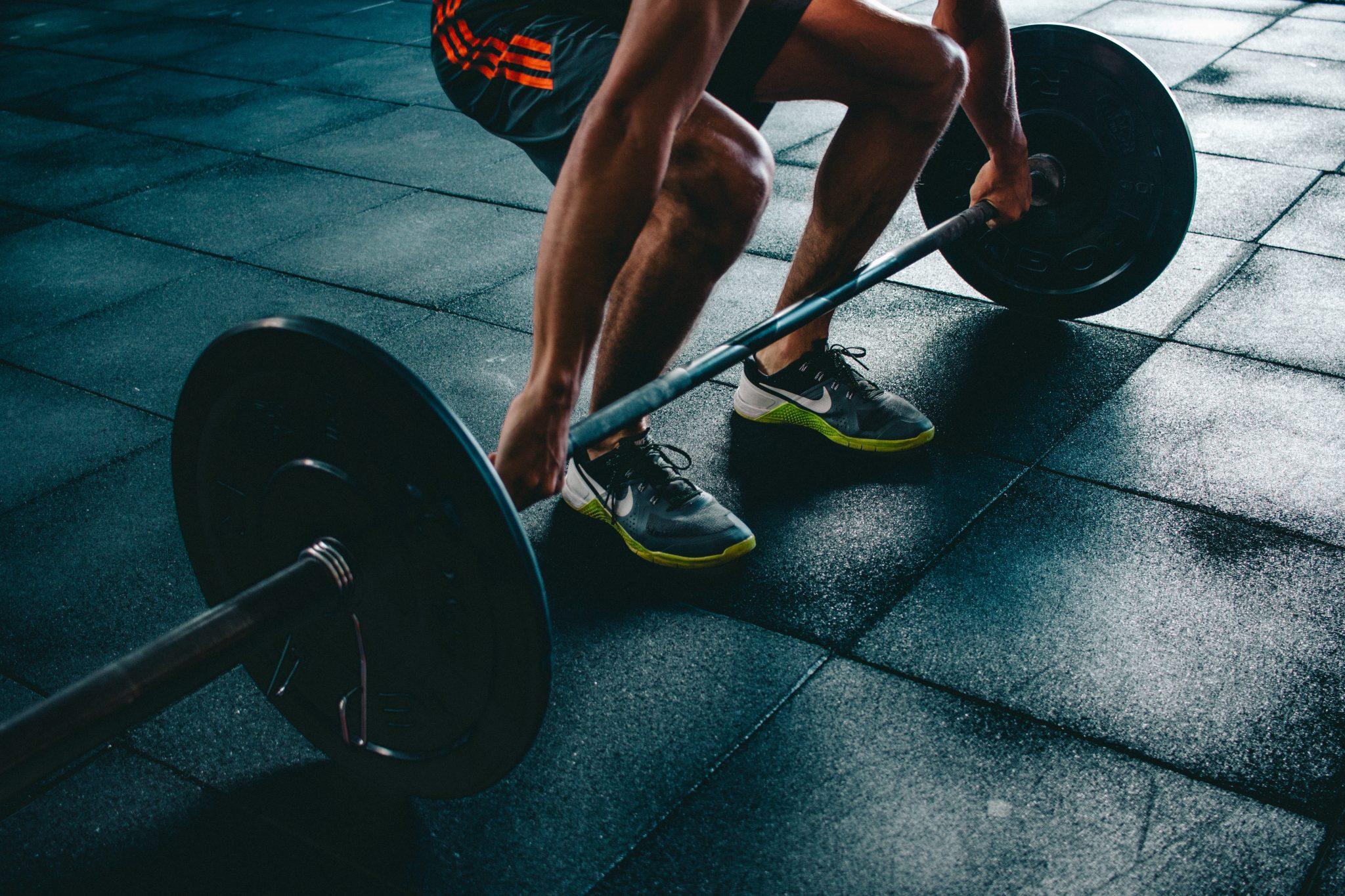 abdul hadi mohamed fares - fitness