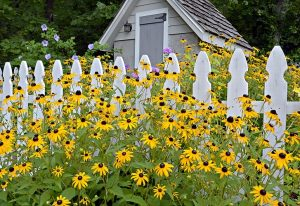 garden-shed-melbourne