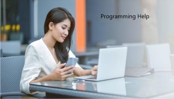 programming help gp