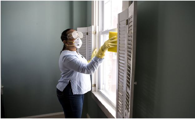 Does cold weather kill mold?
