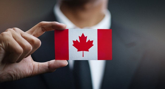 best consultancy in dubai for canada