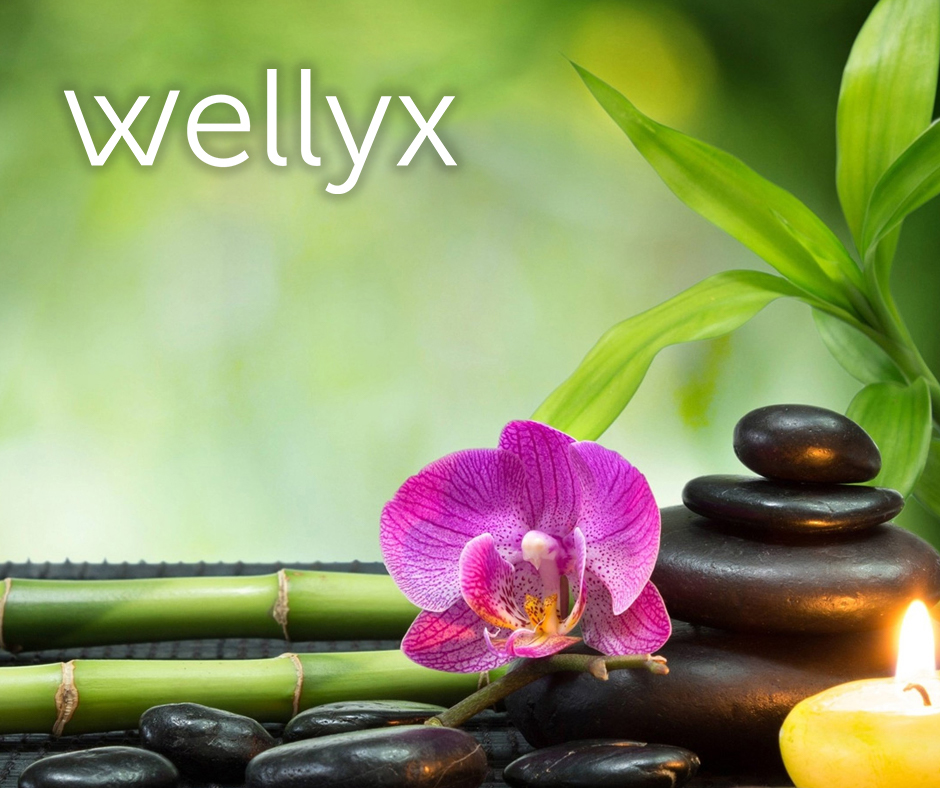 Wellyx Spa POS Software