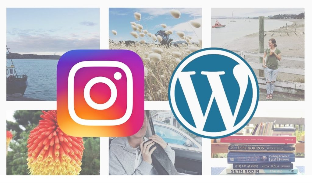 Instagram Widget & Plugins