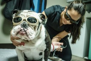 laser therapy equipment