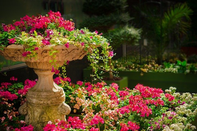 Zen flower garden