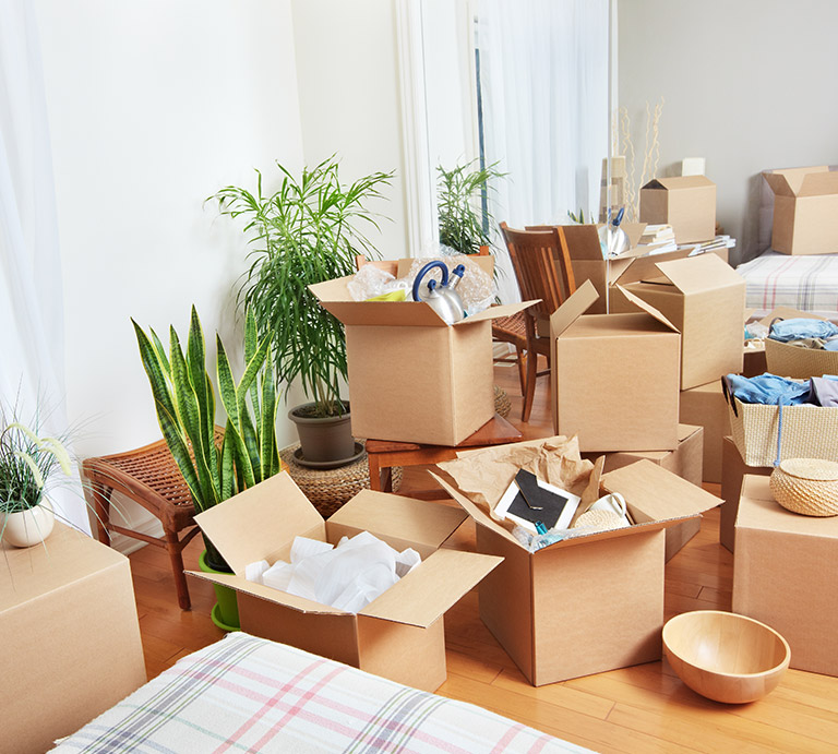 Office Movers in Dubai